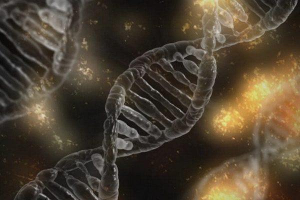 Anomalías cromosómicas y síndromes genéticos asociados a cardiopatías congénitas
